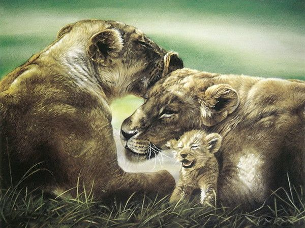 ANIMAUX : méli-mélo animalier