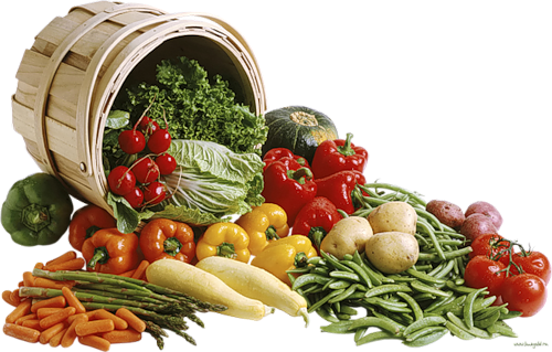 Fruits et legumes page 5 - Difference fruit et legume ...