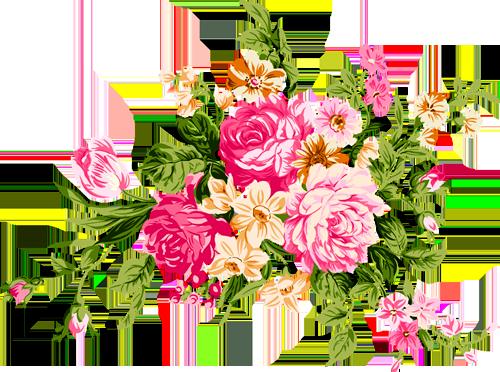 Фото цветов на прозрачном фоне 89