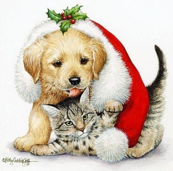 Jeudi 27 décembre 2018 .... C'est le week-end !! 0effddd217debb67159917f92d56ca9f