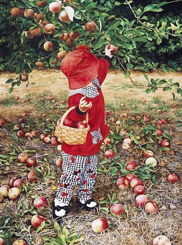ceuillette des pommes