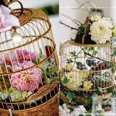 La lise dilou marie sissi marilou - Cage oiseau decoration ...