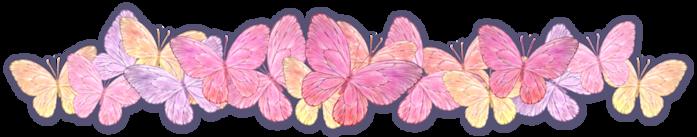 125635761_butterflydividerwarmdAJournalHeader.png