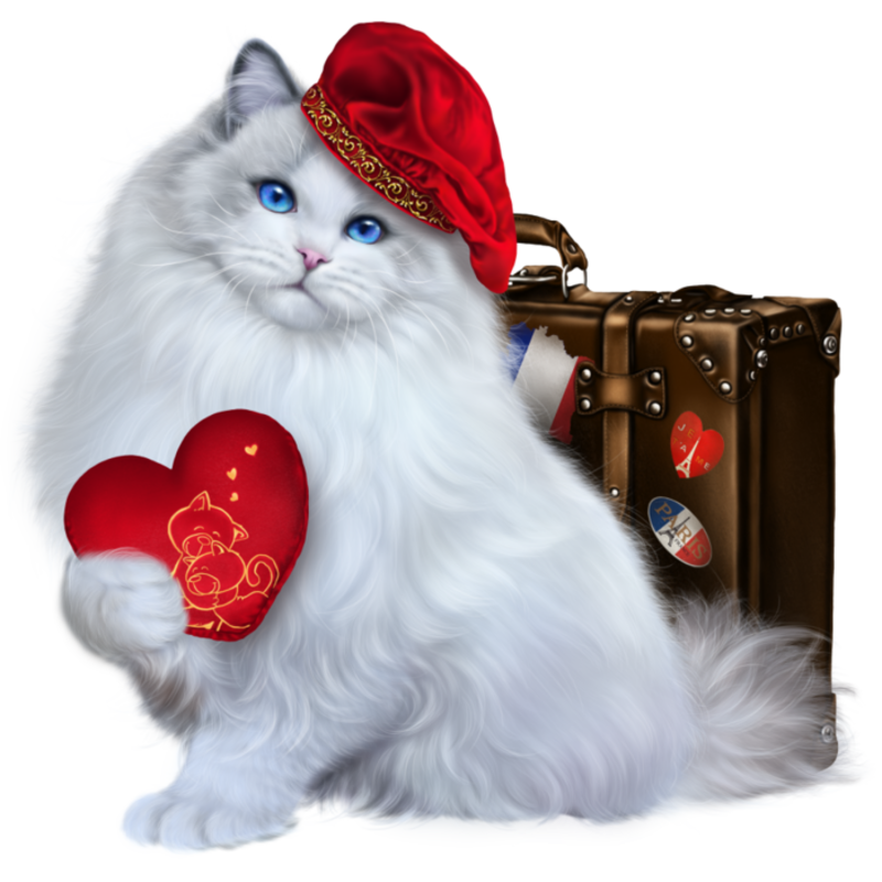Samedi 15 Dec 133301931_6090083_from_paris_with_love1