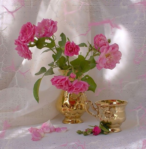 belles images fleurs - flowers