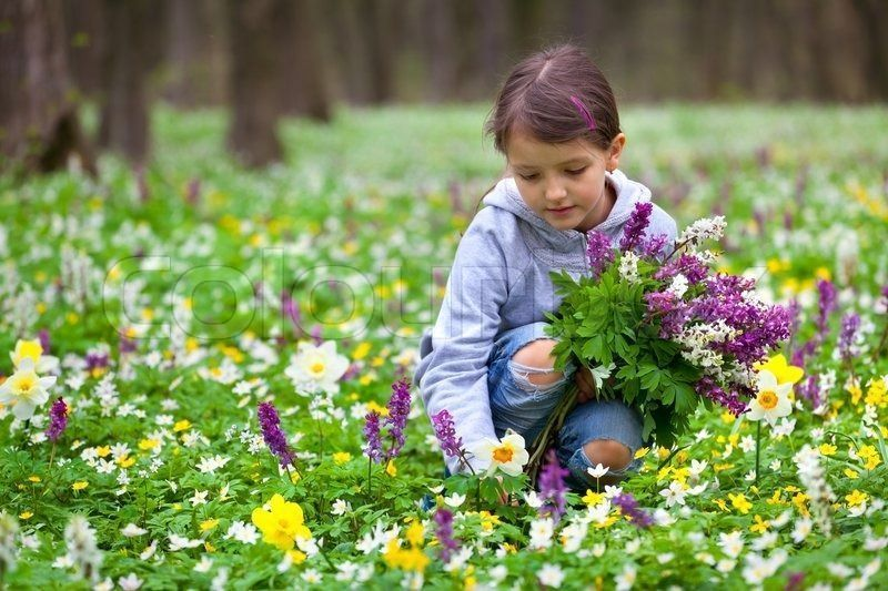 3936470-cute-little-girl-picking-flowers-in-the-spring-forest.jpg