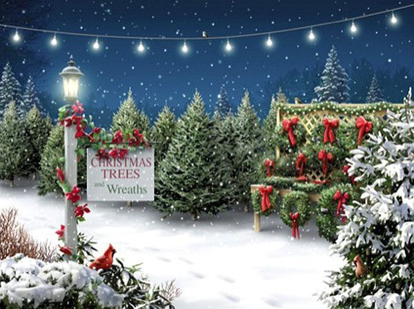 wallpapers noel paysage christmas - photo #23