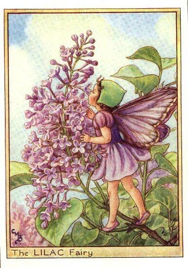 fées des fleurs