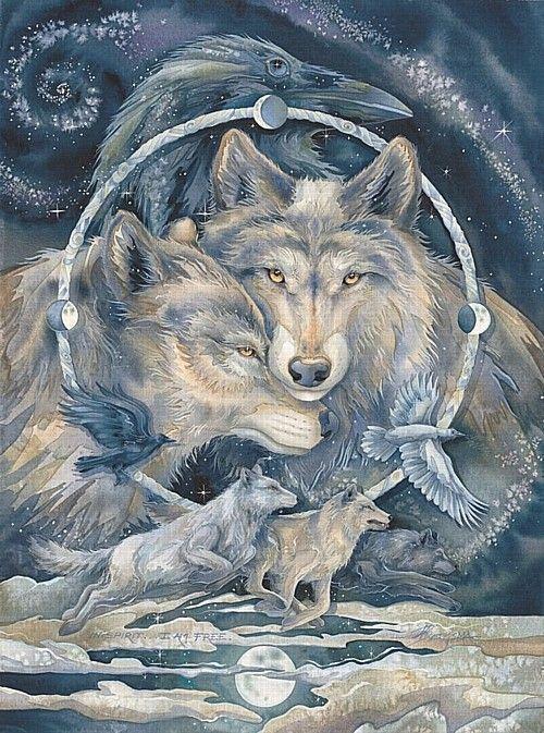 Épinglé par Stephanie Davis sur Nature | Loup, Animaux