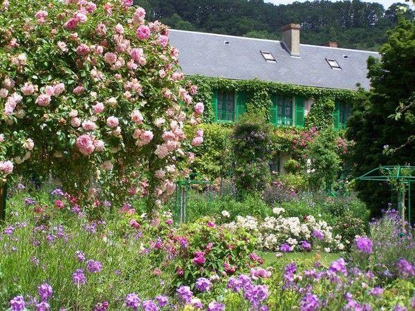 Nature ( fleurs et paysages)