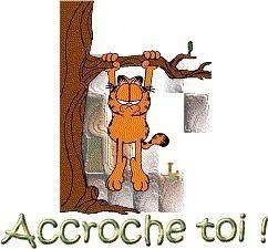 Accroche20toi20Garfield1_1.jpg