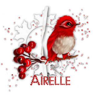 Airelle_4.png