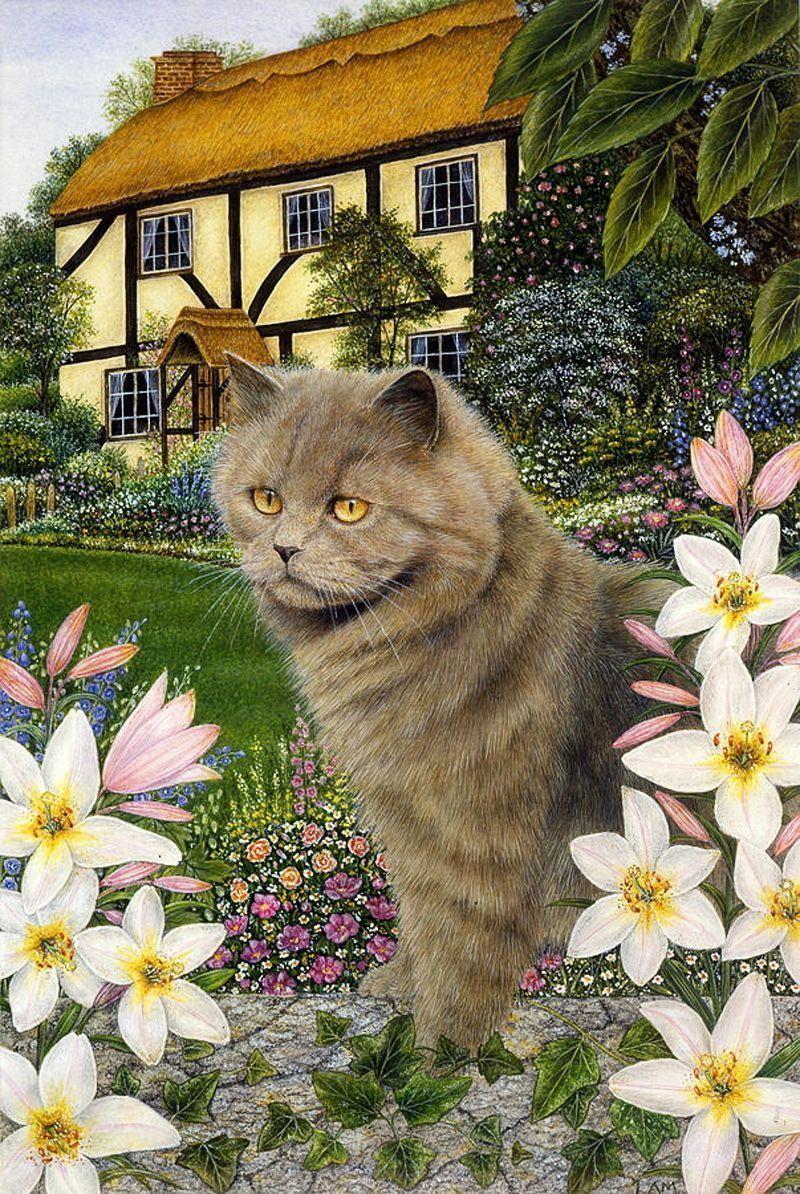 Anne-Mortimer.jpg