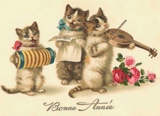 C-CAT-BA-MISS-MR-CAT-3-MUSIC.jpg