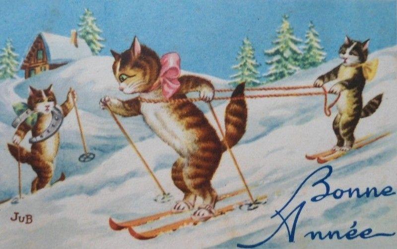 C-CAT-BA-MISS-MR-CAT-3-SKY-DRIVE-MR-CAT.jpg