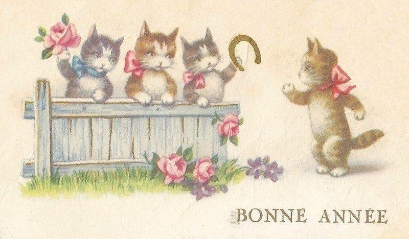 C-CAT-BA-MISS-MR-CAT-4-GATE.jpg