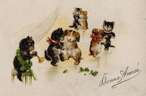 C-CAT-BA-MISS-MR-CAT-DANCING-DOG.jpg