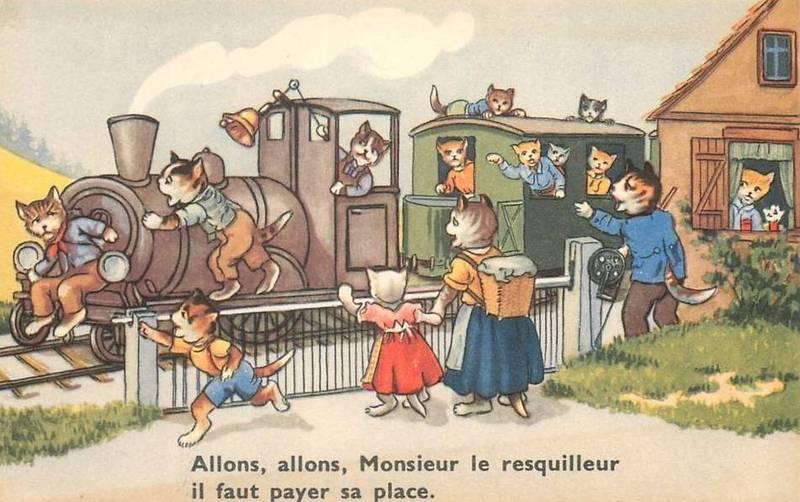 """Résultat de recherche d'images pour """"chat resquilleur humour"""""""