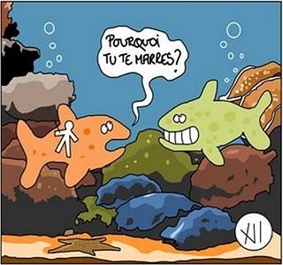 Poisson d 39 avril images humoristiques page 2 - Images poissons d avril ...
