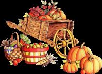 Pumpkins02_dhedey.png