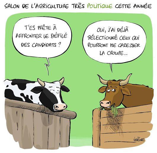 Salon-de-agriculture1.jpg