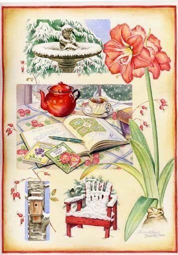superbes illustrations  Gwendolyn Babbitt