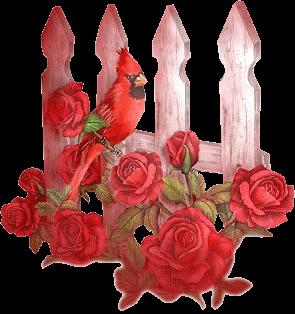 barriere-et-oiseau-rouge.png