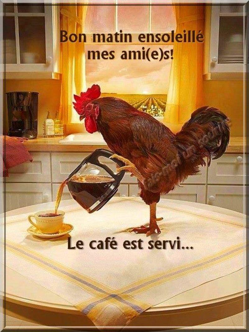 bon-matin_013.jpg
