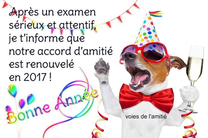 bonne-annee_065.jpg