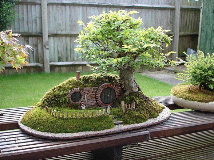 bonsai-photos-magnifiques-11-696x522.jpg
