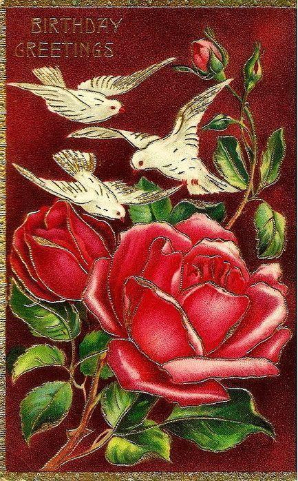 roses jolies roses...