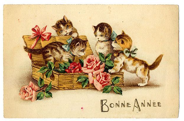 carte-postale-ancienne-chat-voeux.jpg