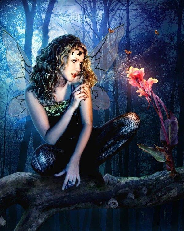 belles images femmes 2