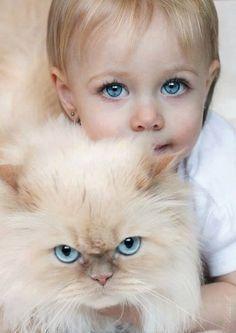images de chien et chat  Dcd719812a0ab04493caefb9b66b033a