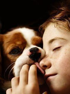 images de chien et chat  Ea5580731fa59f1d23b864400c966d86