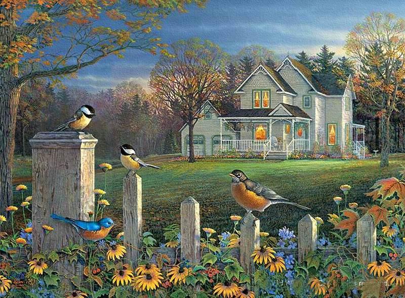 fencelinechattersongbirds.jpg