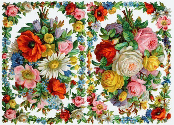 image-ancienne-fleur.jpg