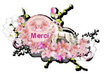 merci7.png