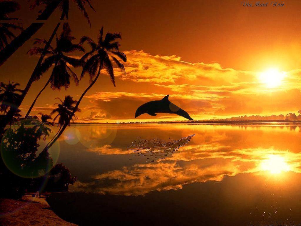 Couchers de soleil - A quelle heure se couche le soleil ce soir ...