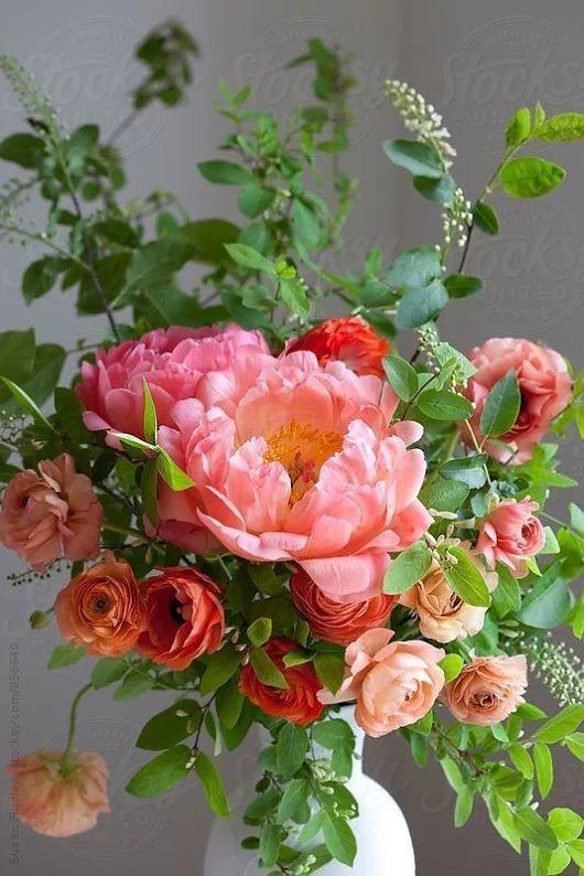 http://mamietitine.m.a.pic.centerblog.net/o/d4d5b715dfb6aee7b1a1cf0ee94a1800.jpg