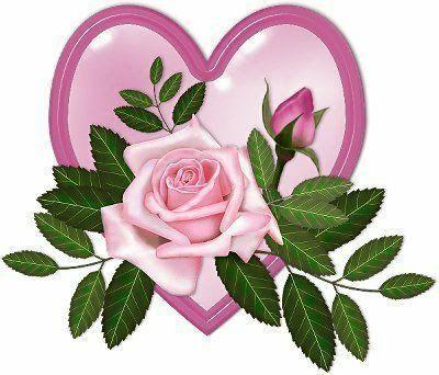 rosas2-1.jpg