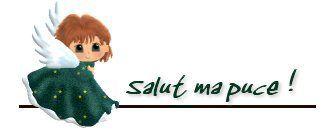 salutmapuce_1.jpg