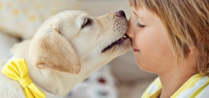 shutterstock_211337236-dog-and-kid-425-x-200.jpg