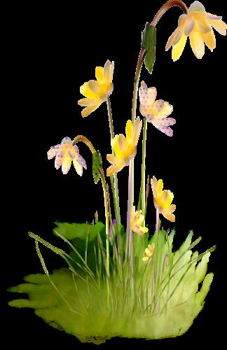 tube-fleur-jaune-png-R.png